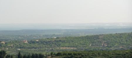 Terreno Ginestra-Affare
