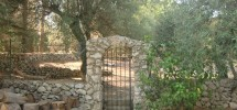 villa a Noto antica 17