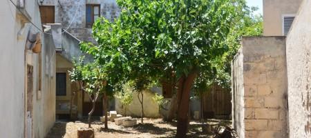Caseggiato con giardino