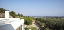 Villa Opuntia 04