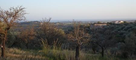 Terreno vista mare
