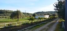 Casale Bochini 03