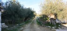 Casale Bochini 04
