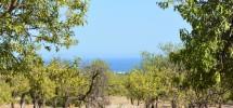 terreno-panoramico-c-da-petrara-noto-vendicari-barocco-mare-01