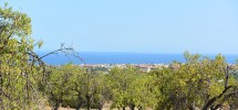 terreno-panoramico-c-da-petrara-noto-vendicari-barocco-mare-05
