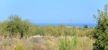 terreno-panoramico-c-da-petrara-noto-vendicari-barocco-mare-14