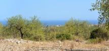 terreno-panoramico-c-da-petrara-noto-vendicari-barocco-mare-17