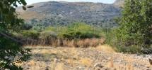 terreno-panoramico-c-da-petrara-noto-vendicari-barocco-mare-19