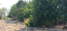 terreno-panoramico-c-da-petrara-noto-vendicari-barocco-mare-20