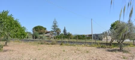 Terreno agricolo in contrada Zacchita Rosolini