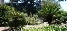 Villa Galfo 04