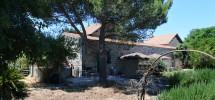 Villa Galfo 15