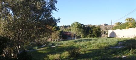 (Italiano) Terreno contrada S. Corrado F.M.