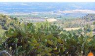 Agriturismo Panoramico