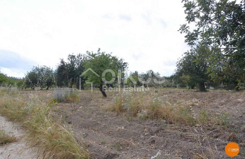 Terreno agricolo in contrada Belludia Noto