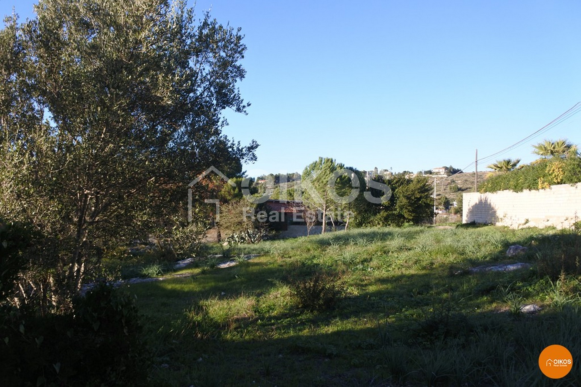 Terreno contrada S. Corrado F.M.