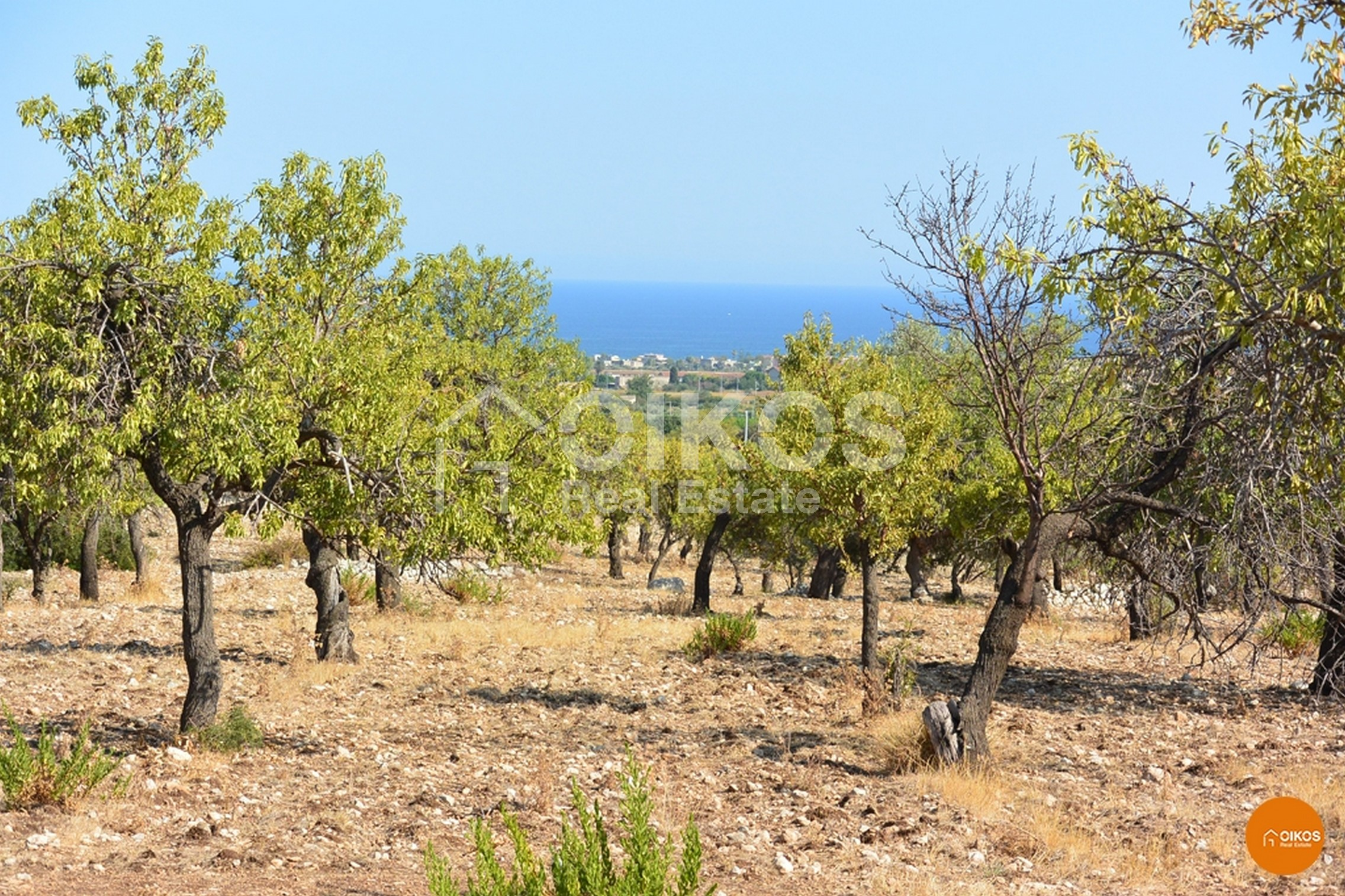 Terreno c.da Petrara