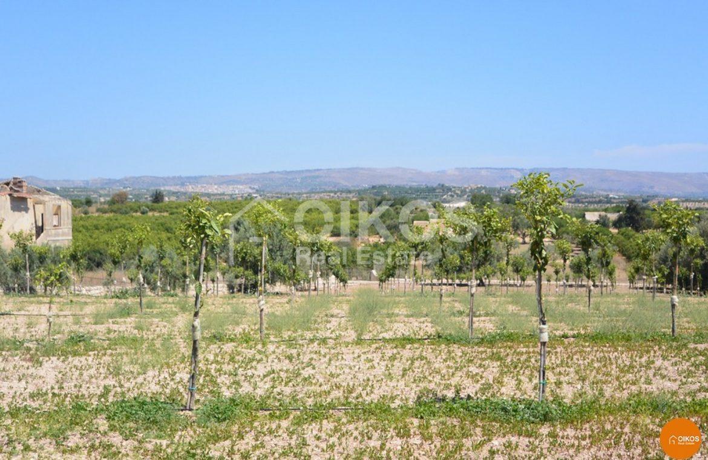 Casetta Rurale Calamosche