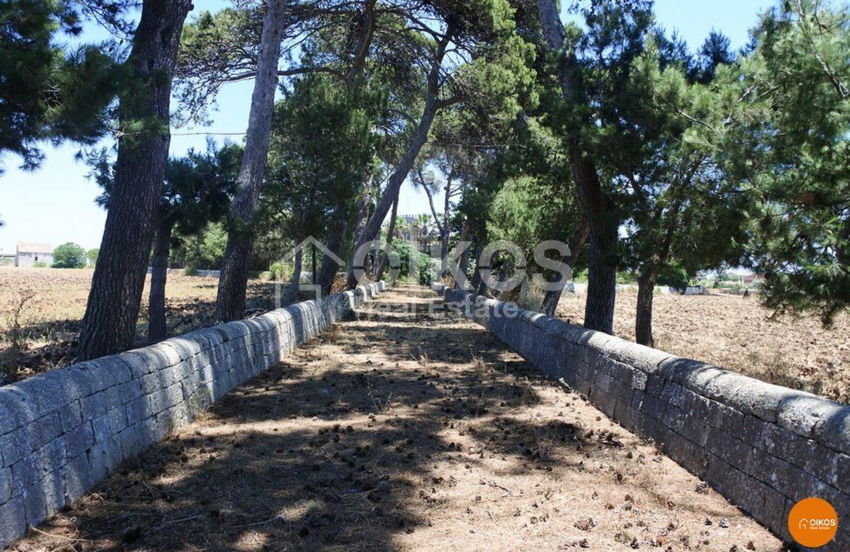 Villa Galfo 03