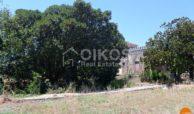 Villa Galfo 13
