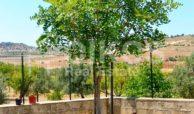 Villetta con terreno cda Misilini Noto (19)