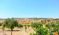Villetta con terreno cda Misilini Noto (23)