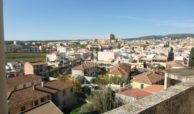 viale P di Piemonte 03