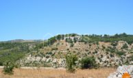 Terreno c da Cugno Vasco 09