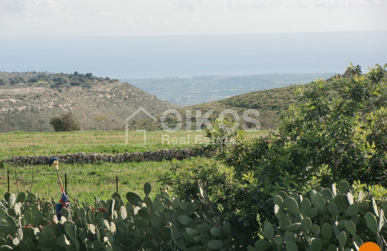 Terreno c da Oliva (22)
