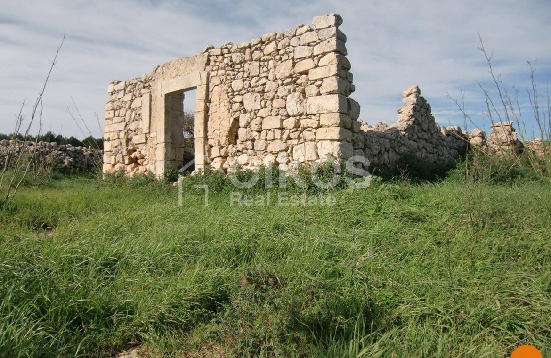 Terreno c da Oliva (34)