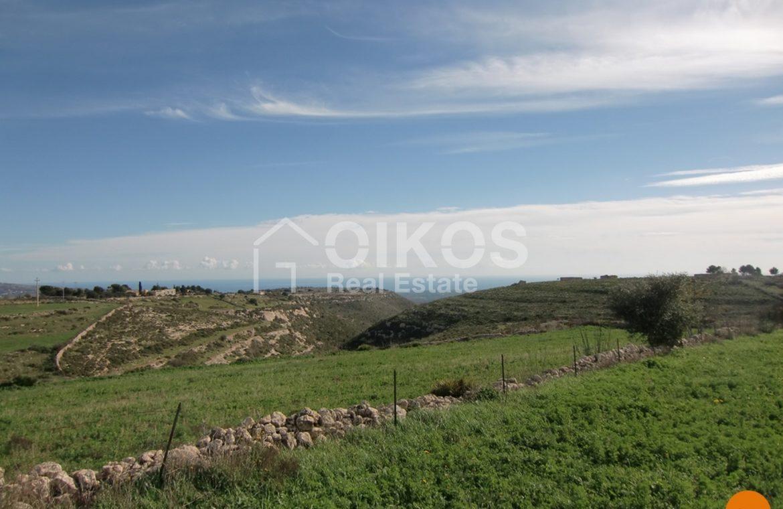 Terreno c da Oliva (39)