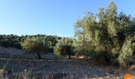 Terreno c da Portelli 07