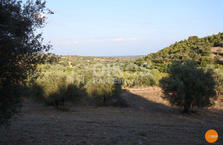 Terreno c da Portelli 08
