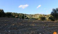 Terreno c da Portelli 11