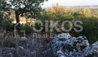 Terreno c da Portelli 12