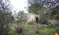 antico mulino di pantalica 29