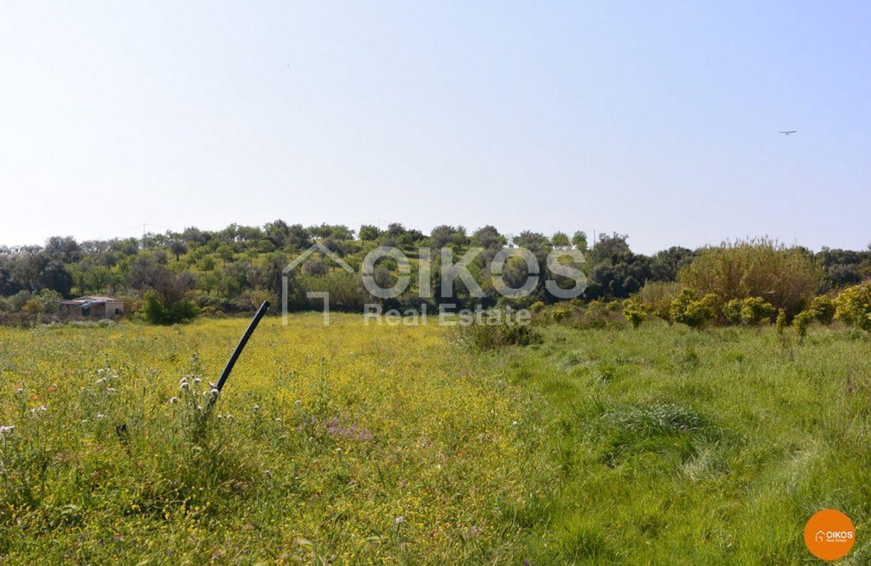 terreno c da Astraco 09