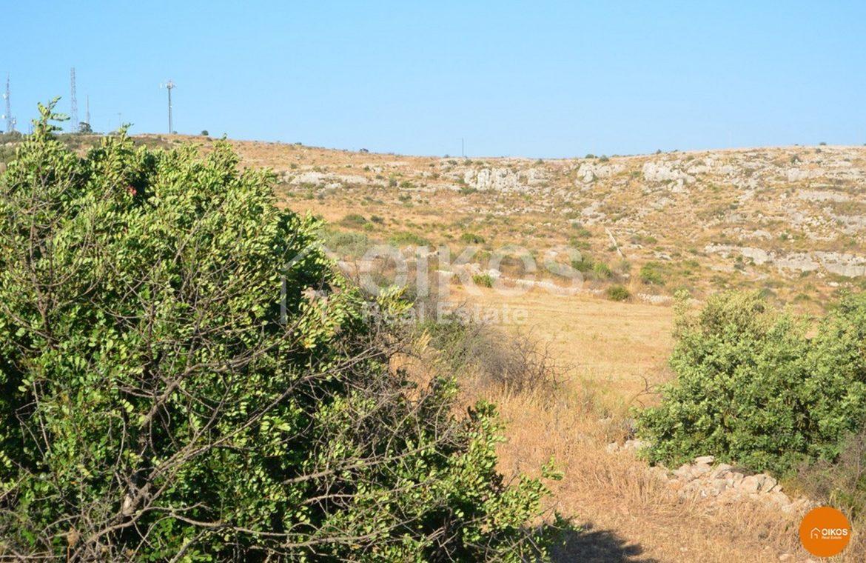 terreno c da s Elia 08