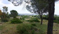 Casale dell'800 nella campagna siciliana 6