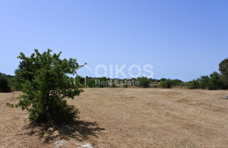 Terreno con casetta vicino Testa dell'Acqua 1