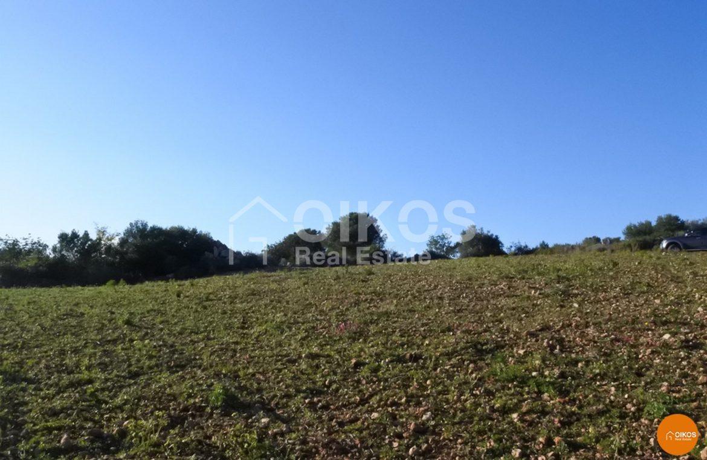 Terreno con casa in contrada Volpiglia 3