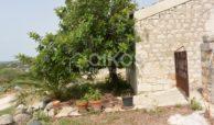Ampio Caseggiato con vista panoramica 8