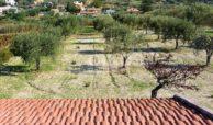 Casa in campagna con ampio giardino 8