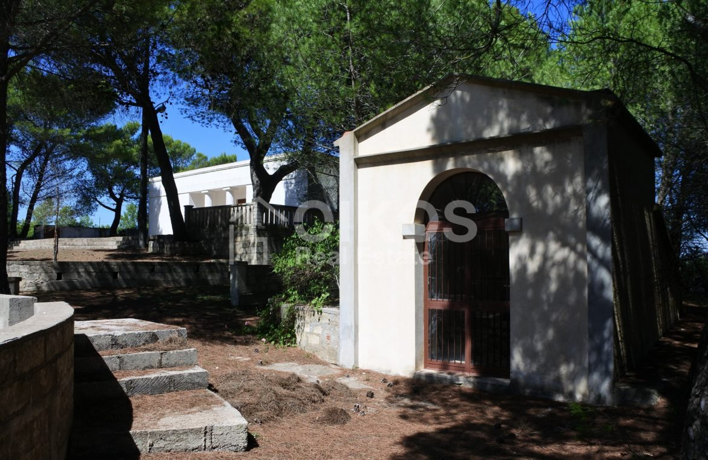 Villa con pineta e piscina (9)