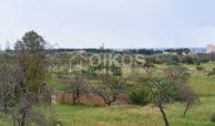 Villetta con giardino e vista panoramica sul mare 12