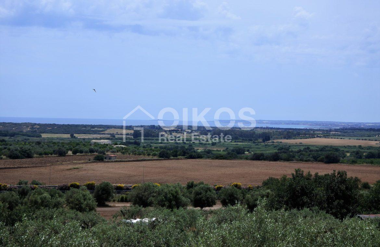 Villa tra gli ulivi (17)