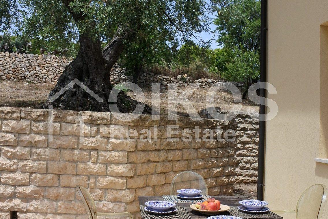 Villa tra gli ulivi (18)