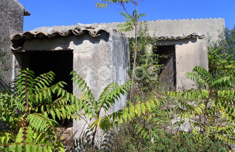 Antico caseggiato rurale con ampio terreno 6