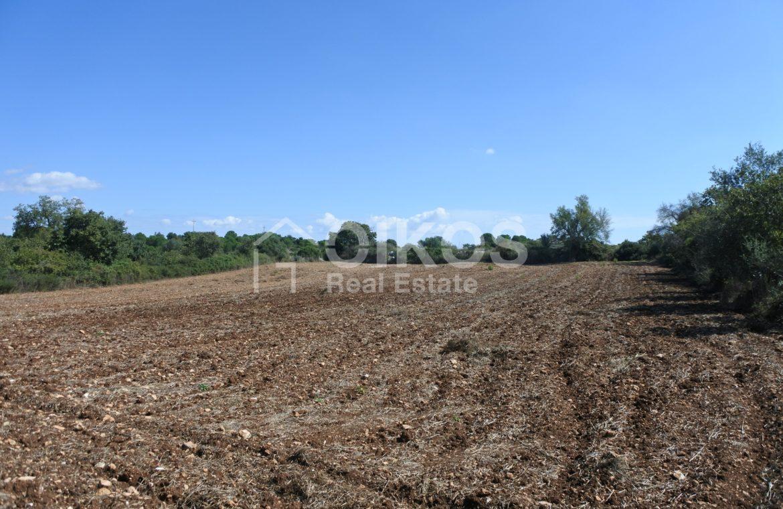 Antico caseggiato rurale con ampio terreno 8