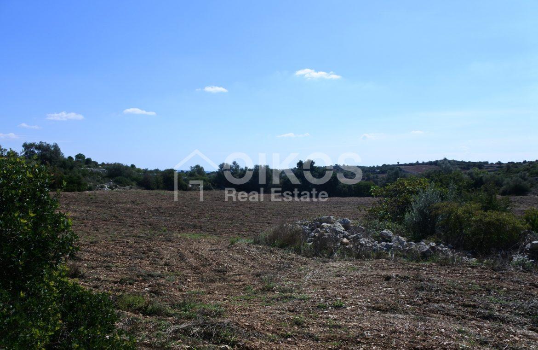 Antico caseggiato rurale con ampio terreno 9
